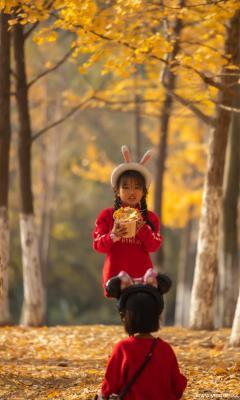 秋天里-老石摄影